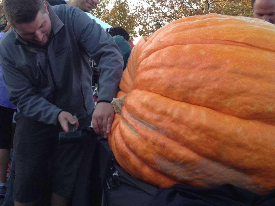 All Hail Pumpkin Beer—Gathering of the Gourds Returns to Iron Hill